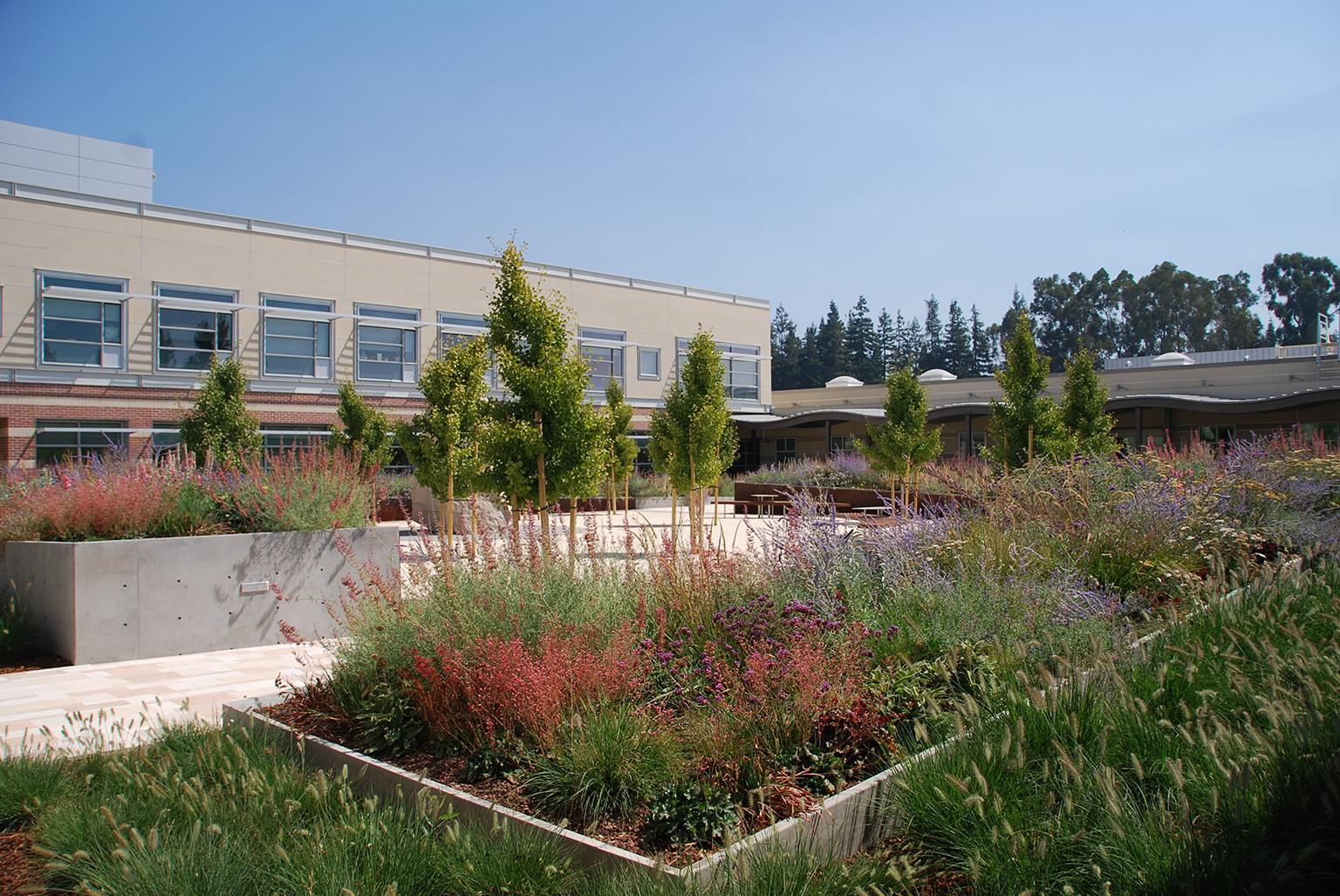 VA Palo Alto Mental Health Facility
