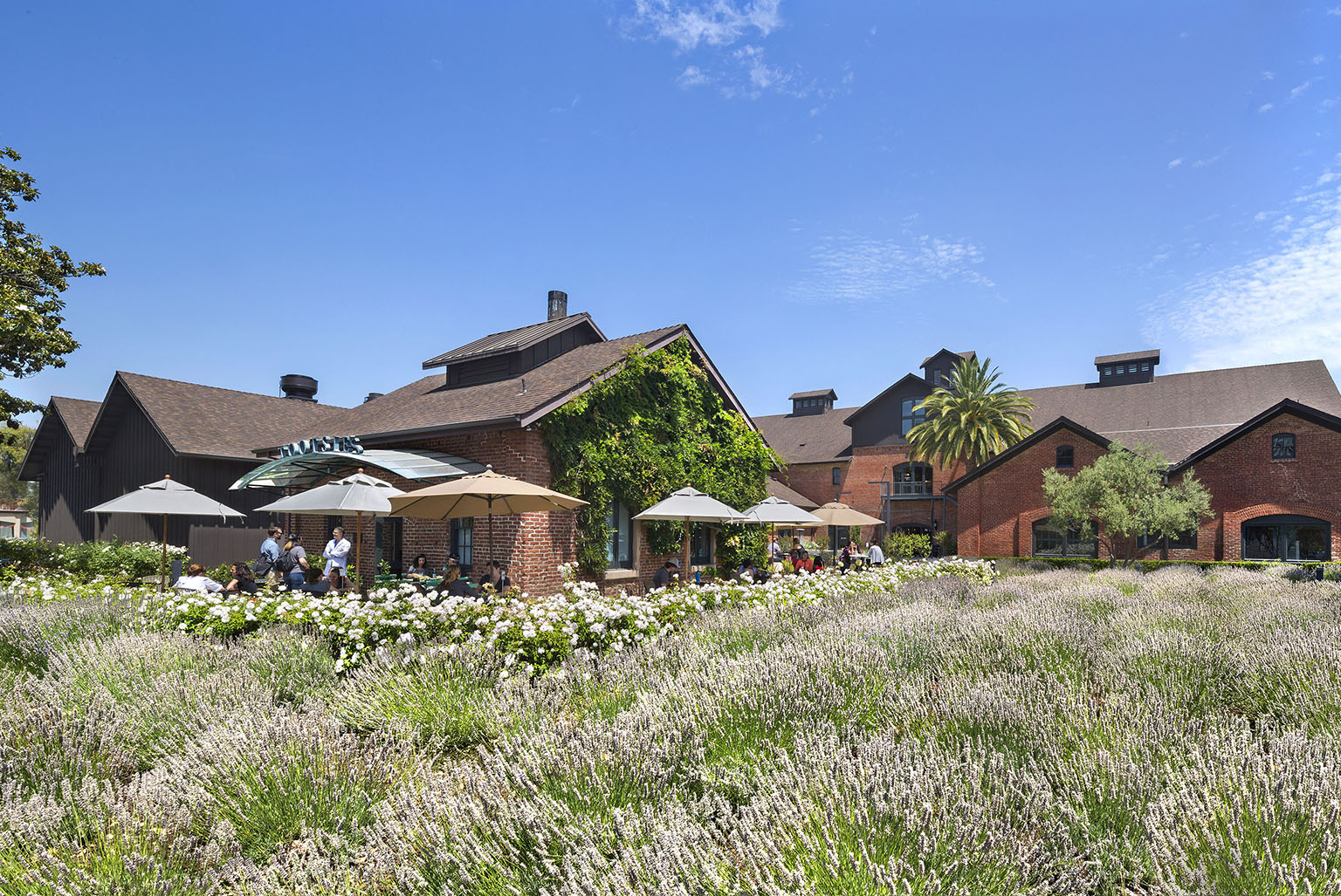 Stanford Old Winery